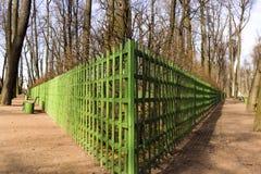 城市公园在早期的春天 免版税库存照片