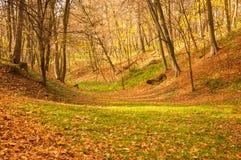 城市公园在秋天 免版税库存照片