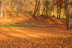城市公园在秋天 库存图片