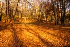 城市公园在秋天 免版税库存图片