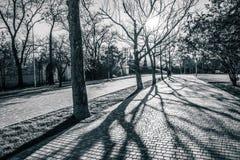 城市公园方式 免版税图库摄影