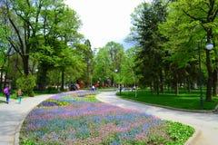 城市公园步行 库存照片