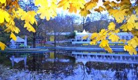 城市公园池塘黄色叶子 免版税库存图片