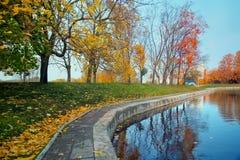 城市公园秋天风景有金黄树和池塘的 免版税库存照片
