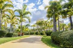 城市公园,走道在公园 环境美化与跑步的轨道和自行车道在绿色公园 免版税图库摄影