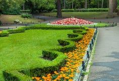 城市公园绿叶 免版税库存照片