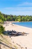 城市公园Berd吐与海滩和度假者人民 的treadled 免版税库存照片