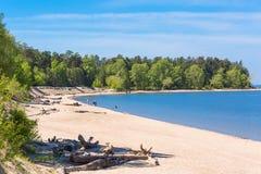 城市公园Berd吐与海滩和度假者人民 的treadled 库存照片