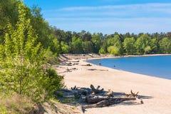 城市公园Berd吐与海滩和度假者人民 的treadled 免版税库存图片