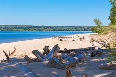 城市公园Berd吐与海滩和度假者人民 的treadled 库存图片