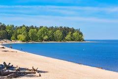 城市公园Berd吐与海滩和度假者人民 的treadled 免版税图库摄影