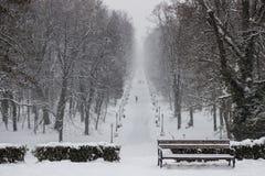城市公园Maksimir萨格勒布,冬天 免版税库存图片