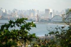 城市典型olinda的视域 图库摄影