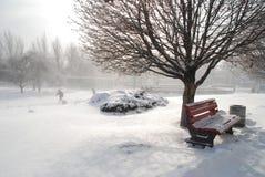 城市冬天 免版税图库摄影