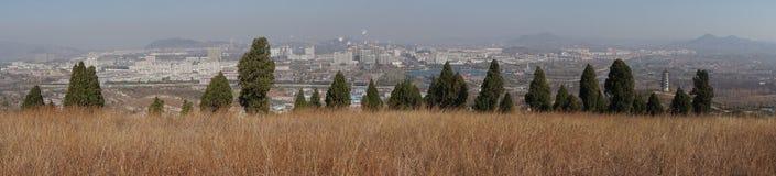 城市和树和草在冬天 免版税库存照片
