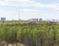 城市和绿色森林在春日 库存图片