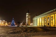 城市圣诞树 库存图片