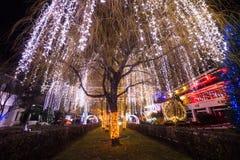 城市圣诞灯夜 库存图片