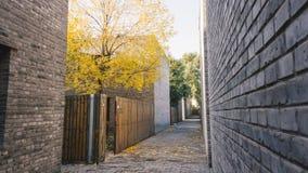 城市在秋天,运行在房子和公园之间撒布与下落的叶子的胡同 免版税库存图片