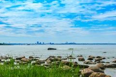 城市塔林看法从波罗的海的 免版税库存图片