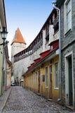 城市墙壁的街道和塔 老城市 爱沙尼亚塔林 免版税库存照片