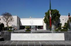 城市墨西哥博物馆 免版税库存照片