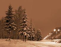 城市夜间冬天 免版税库存照片