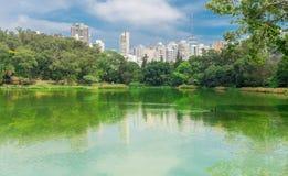 城市摩天大楼的看法从Aclimacao公园的 免版税库存照片