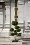 城市柱子寺庙的,曼谷,泰国修剪的花园 库存图片