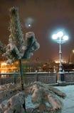 城市每夜的冬天 库存图片