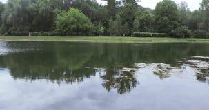 城市池塘在公园 股票视频