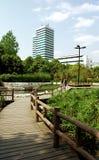 城市沼泽公园 库存图片