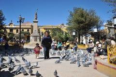 城市波托西 在城市街道上的地方居民 库存照片