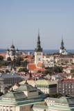 城市爱沙尼亚全景雪塔林树型视图冬天 库存图片