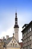 城市爱沙尼亚大厅老塔林托马斯塔城镇翻板天气 老房子和风向城镇厅的老托马斯耸立 图库摄影
