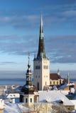 城市爱沙尼亚雪塔林结构树 免版税库存图片