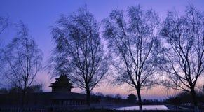 城市禁止的皇家宫殿塔楼 库存照片