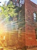 城市胡同充满金黄光 免版税库存图片