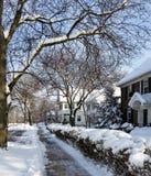 城市街道在多雪,晴朗的早晨 免版税库存照片