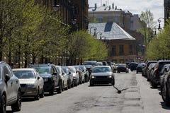 城市街道,在路的汽车,鸟飞行,大厦,树 库存图片