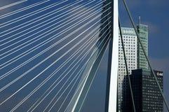 城市视图鹿特丹, Erasmus桥梁,摩天大楼 库存照片
