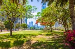 城市视图,迪拜 免版税库存图片