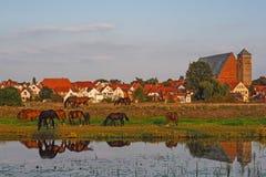 城市韦尔登县都市风景河的阿列尔,下萨克森州,德国 库存图片
