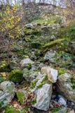 城市11月的公园假山庭园,中间欧洲 库存照片