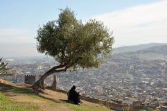 城市fes摩洛哥 免版税库存照片