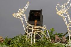 城镇厅和在摊位屋顶的光驯鹿在Xmas销售时间 库存图片