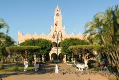 城镇厅在梅里达,墨西哥 免版税库存图片