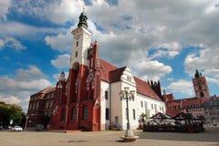 城镇厅,法兰克福奥得河,勃兰登堡,德国状态  库存图片