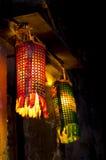 城镇视图水xitang 图库摄影