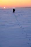 域去多雪的人 库存照片